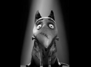 Nuovo trailer italiano per Frankenweenie