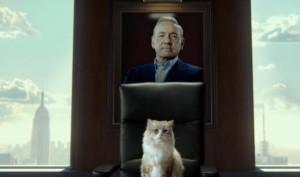Kevin Spacey si trasforma in un gatto nel trailer di Nine Lives