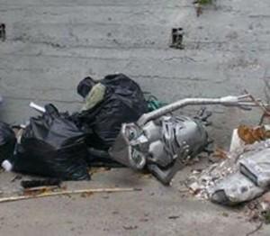 E.T. finisce tra i rifiuti a Lamezia Terme