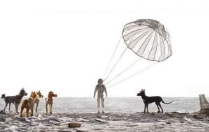 Isle of Dogs, il trailer del nuovo film in stop-motion di Wes Anderson
